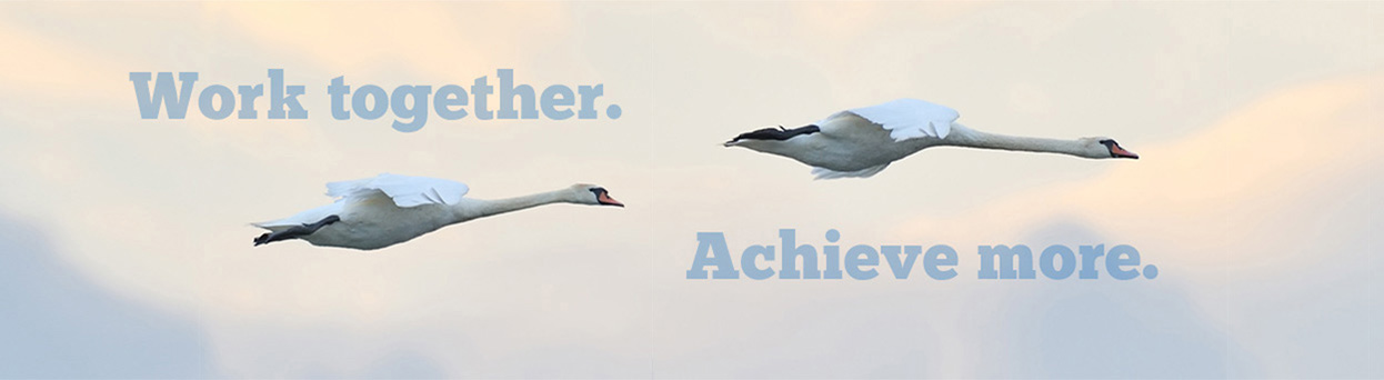 Work Together. Achieve More.